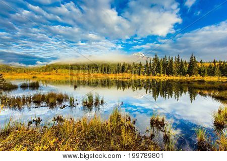 Patricia Lake among the firs and pines. Water reflects the sky. Cool cloudy morning in the Rocky Mountains. The concept of extreme and ecotourism