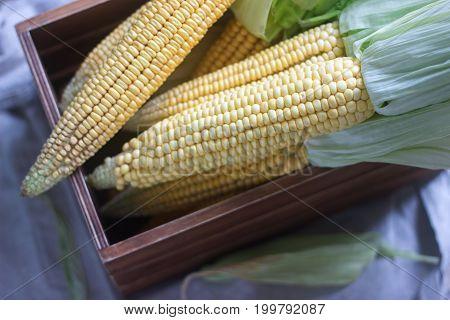 Fresh sweet raw corn in a wooden box. Horizontal photo