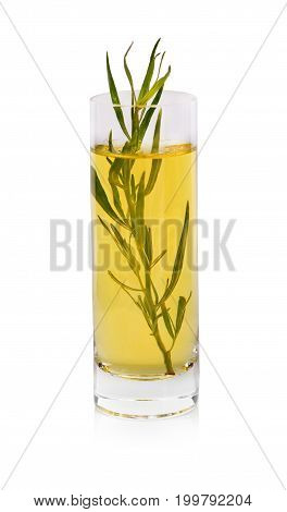 A glass of yellow olive oil with a twig of tarragon, particularly suitable for chicken, fish, and egg dishes, one of the four fines herbes of French cooking isolated on a white background.