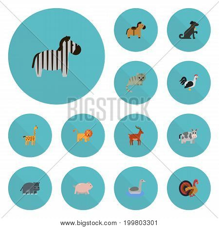 Flat Icons Kitty, Camelopard, Gobbler And Other Vector Elements