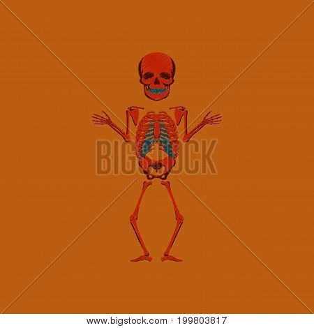 flat shading style icon human skeleton anatomical