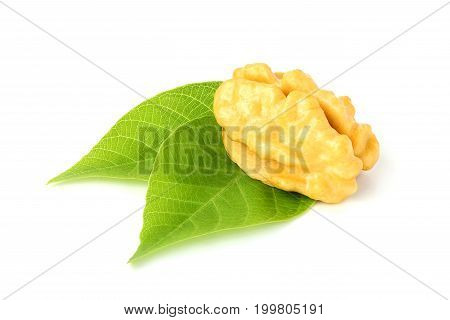 Walnuts green close-up isolated on a white background .