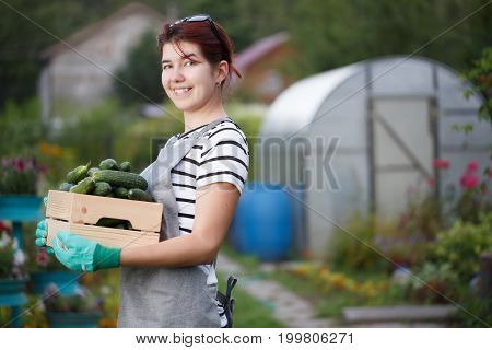Smiling brunette with cucumber crop