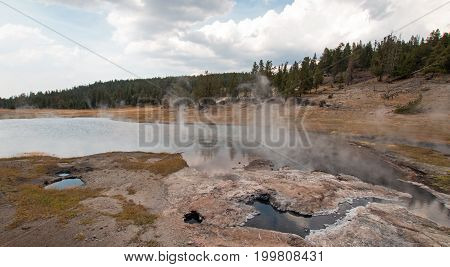 Young Hopeful Geyser next to Firehole Lake in Yellowstone National Park in Wyoming United States