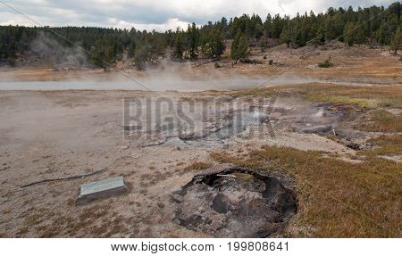 Young Hopeful Geyser next to Firehole Lake in the Lower Geyser Basin in Yellowstone National Park in Wyoming United States