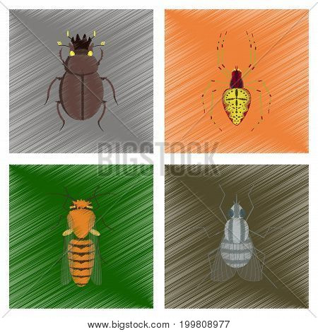 assembly flat shading style illustration of bug scarab Araneus bee fly
