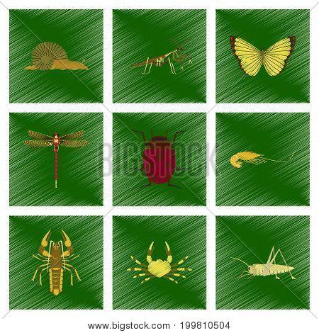 assembly flat shading style illustration of bug snail butterfly dragonfly ladybug