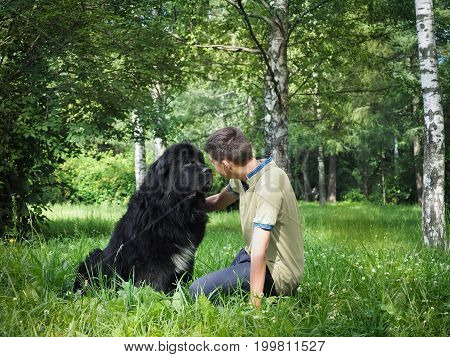 The owner communicates with his dog. A large black Newfoundland. Forest trees birch grass summer
