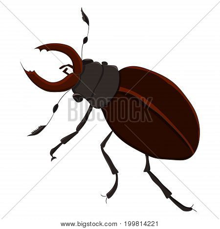 The horned beetle. vector illustration. Drawing by hand
