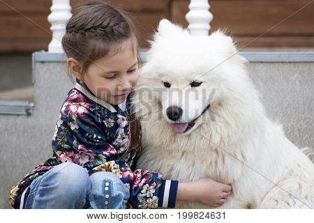 Cute Little Girl Hugging A White Dog In Park. Good Sunny Weather,bright Sunlight And Cute Models.