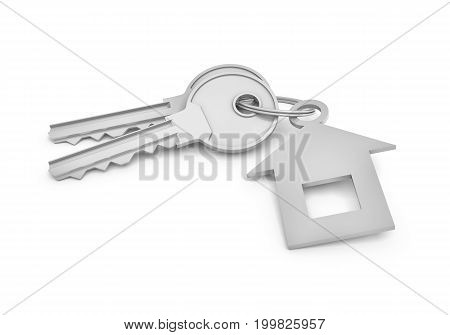 3d rendering of two isolated silver keys on a key ring with label. Safety and protection. Keep information locked. Password protected entry.