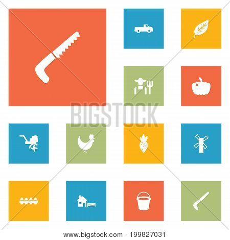 Collection Of Pickup, Hacksaw, Grower And Other Elements.  Set Of 12 Agriculture Icons Set.