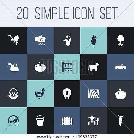 Collection Of Pail, Kine, Maize And Other Elements.  Set Of 20 Agriculture Icons Set.