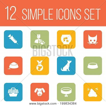 Collection Of Veterinarian, Cat, Head And Other Elements.  Set Of 12 Mammal Icons Set.