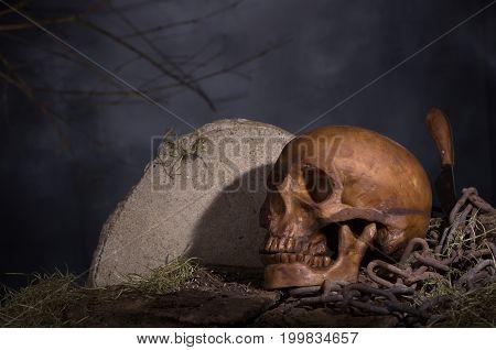 Night scene of a scary halloween skull