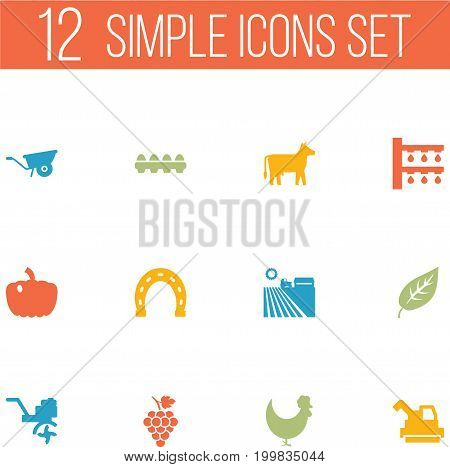 Collection Of Rooster, Gourd, Tray Of Eggs And Other Elements.  Set Of 12 Agriculture Icons Set.