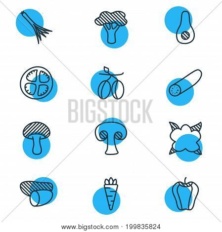 Editable Pack Of Tomato Slice, Cauliflower, Tree And Other Elements.  Vector Illustration Of 12 Vegetables Icons.