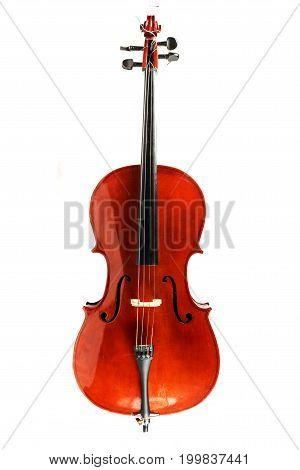 An Old Cello