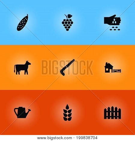 Collection Of Grain, Wooden Barrier, Vineyard And Other Elements.  Set Of 9 Harvest Icons Set.