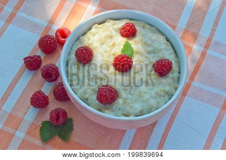 oatmeal in a bowl with raspberries on the table next to the scattered raspberries in the garden