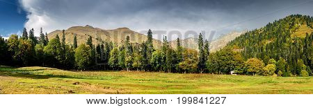 Panorama Landscape With A Meadow And Forest In The Mountains, In Abkhazia In The Caucasus.
