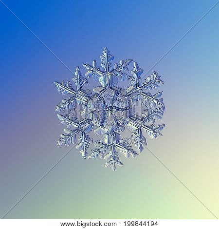 Real snowflake macro photo: large snow crystal of stellar dendrite type with six long, elegant arms, many side branches and massive central hexagon. Snowflake glittering on smooth gradient background.