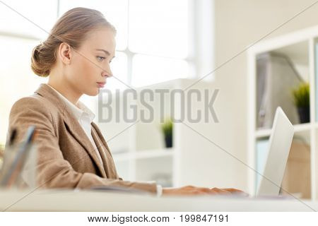Talented young businesswoman wrapped up in work while sitting in front of laptop at spacious open plan office, profile view