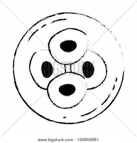 white background with monochrome blurred silhouette of front view division of the ovule in cells vector illustration