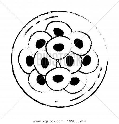white background with monochrome blurred silhouette of front view division of the ovule in several cells vector illustration