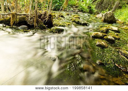 Water in a creek in the nature .