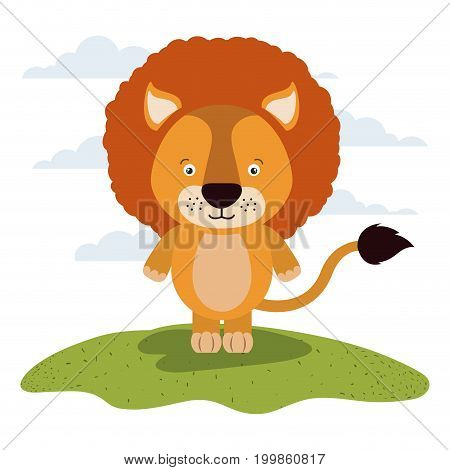 white background with color scene cute lion animal in grass vector illustration