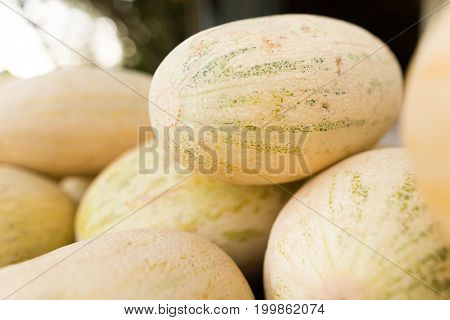Yellow melons are sold on the road .