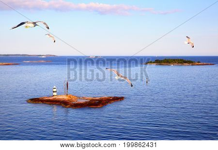 Scandinavian landscape with small islands and flying sea gulls. Finland