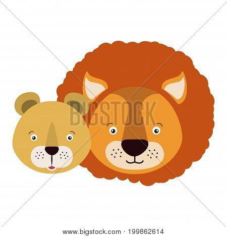 white background with colorful caricature face couple cute lion and lioness animals vector illustration