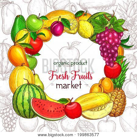 Fruit frame border for food market poster. Apple, lemon, orange, banana and pear, mango, grape and pineapple, peach, watermelon, plum and melon, avocado, kiwi and apricot sketches