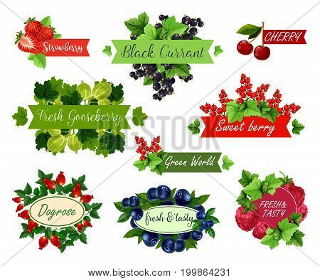 Berry and fruit label set. Strawberry, raspberry, cherry, blueberry, red and black currant, gooseberry and briar ripe fruit and green leaf with ribbon and badge for juice, dessert and jam design