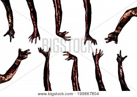 Halloween theme:Blood zombie hands on white background zombie demon killer maniac with clipping path.