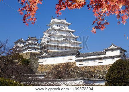 Beautiful Himeji Castal In The Fall Season, Japan