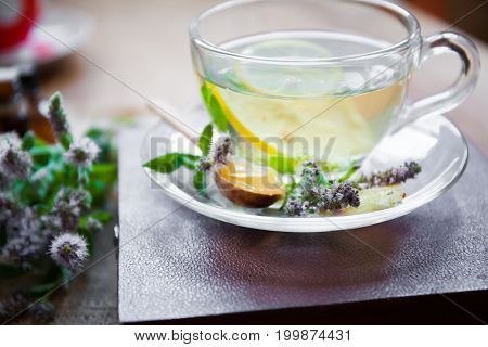 Herbal Tea From Lemon Balm