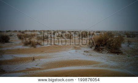 Snow in the Kyzylkum desert in Uzbekistan