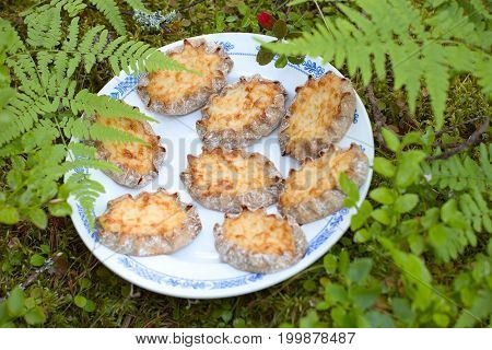 Karelian pasties- piirakka on a moss stone in forest.