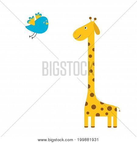 Giraffe with spot. Flying bird. Zoo animal. Cute cartoon character. Long neck. Savanna jungle african animals collection. Education cards for kids. Isolated. White background Flat design. Vector