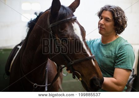 Young man caressing the brown horse in the stable