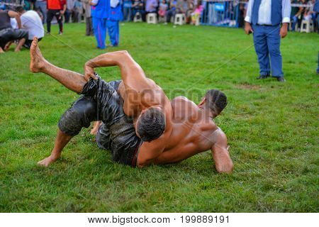 Heavyweight wrestling fight & wrestling concept and win