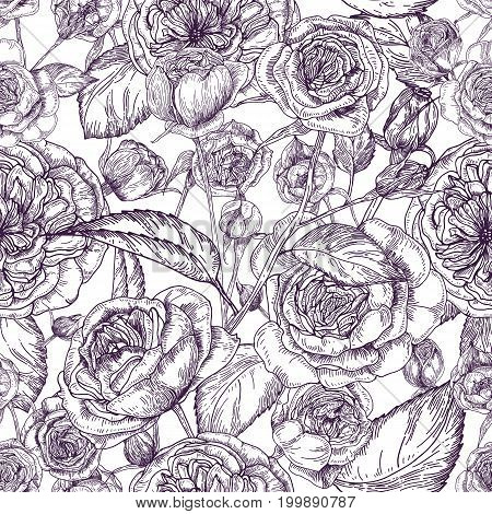 Beautiful detailed pion-shaped rose seamless pattern. Hand drawn blossom flowers and leaves. Black and white vintage vector illustration