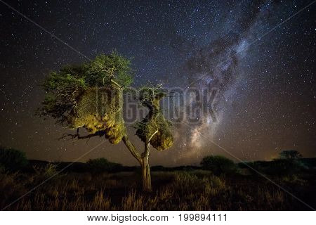 Blazing Milky Way In The Kalahari Desert During A New Moon In The Northern Cape Of South Africa