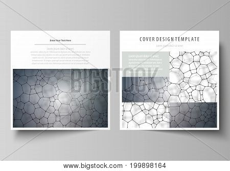 Business templates for square design brochure, magazine, flyer, booklet or annual report. Leaflet cover, abstract flat layout, easy editable vector. Chemistry pattern, molecular texture, polygonal molecule structure, cell. Medicine, science, microbiology