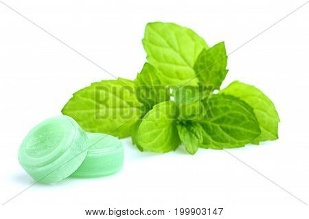 Peppermint candy isolated on a white background.