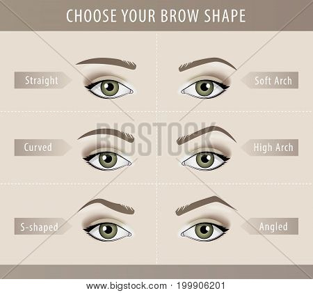 Different eyebrow shapes tutorial. vector beauty template
