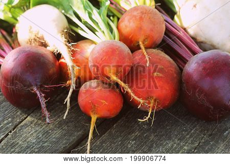 Fresh farm colorful beetroot on a wooden background. Detox and health. Selective focus. Red, golden, white beet .